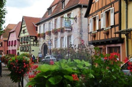Bergheim (Haut Rhin)