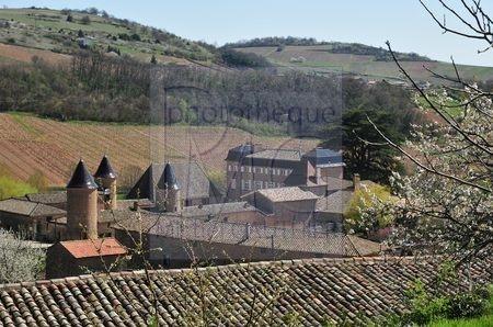 Chasselas (Saône et Loire)