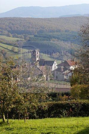 Le Charolais (Saone et Loire)