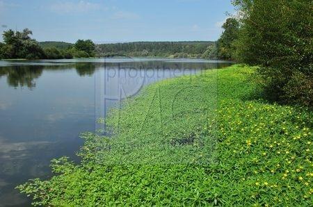 Perrigny sur Loire  (Saône et Loire)