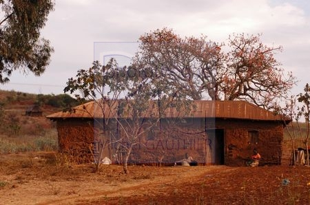 Tanzanie nord