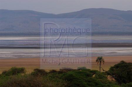 Lac Manyara (Tanzanie)