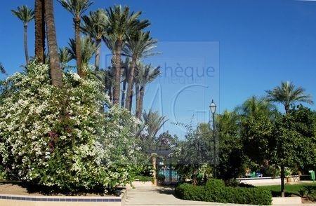 Flore du Maroc