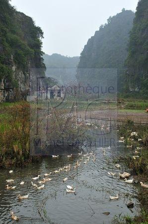 Halong Terrestre (Vietnam)