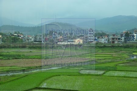 Région d'Hanoi (Vietnam)
