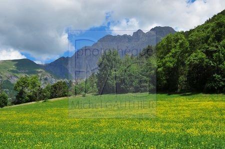 Roméyère (Alpes de Haute Provence)