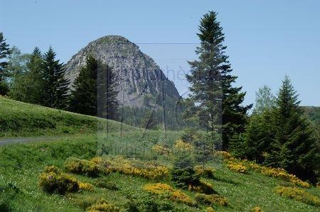 Le Mont Gerbier de Jonc (Ardèche)