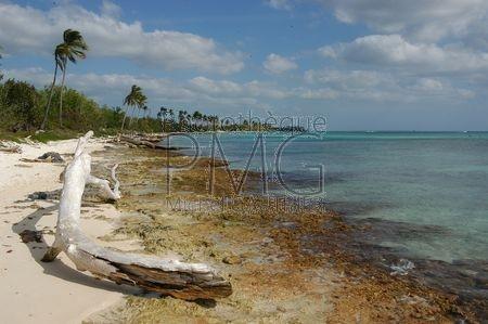 Bayahibe (République Dominicaine)