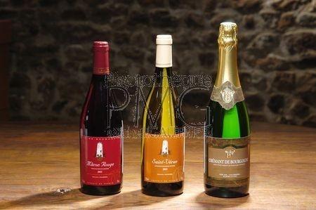 Le vin blanc de Bourgogne.