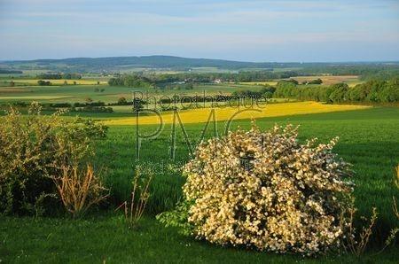 Bouhy (Nièvre)