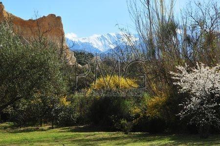 Ille sur Têt (Pyrenées Orientales)