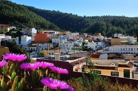 Arova (Tenerife)