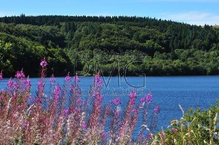 Le Lac de Guéry (Puy de Dôme)