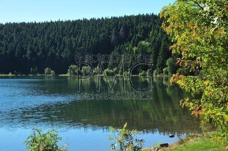 Lac Servière (Puy de Dôme)