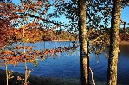 Le Lac de Crescent (Nièvre)