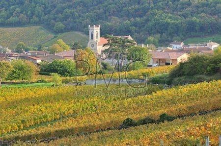 Fuissé (Saône et Loire)