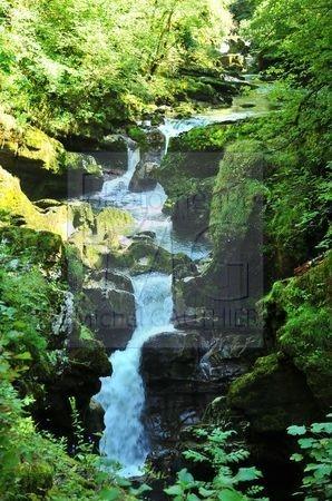 Pertes de l'Ain (Jura)
