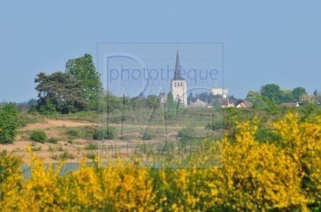 Darvoy (Loiret)
