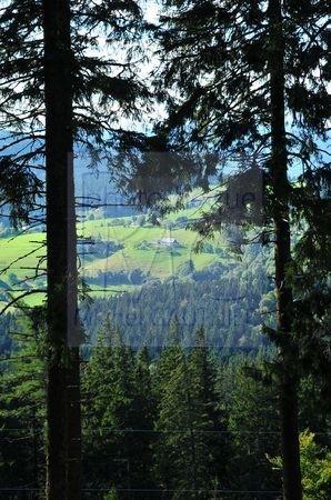 Lac Blanc (Haut Rhin)