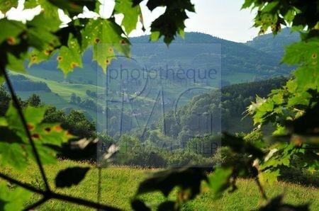 Orbey (Haut Rhin)