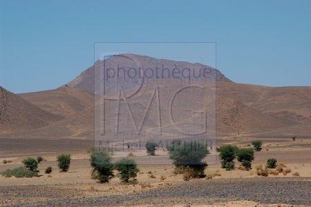 Le désert marocain (Maroc)