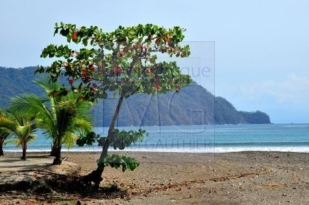 Playa Tambor (Costa Rica)