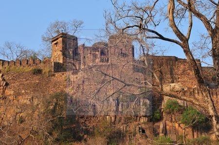 Ranthambore (Inde)