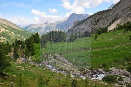 La vallée Blanche de Laverq (Alpes de Haute Provence)