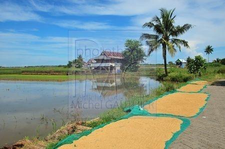 Makassar (Sulawesi)