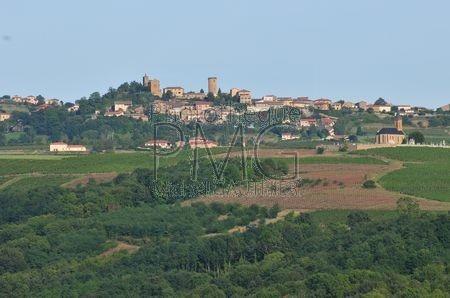 Oingt (Rhône)