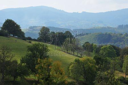 Vallée de l'Azergues (Rhône)