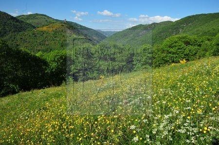 Gorges de la Truyère (Aveyron)