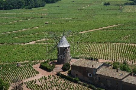 Romanèche Thorins (Saône et Loire)