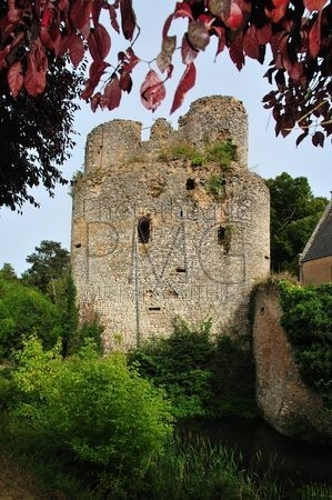 Lys Saint Georges (Indre)