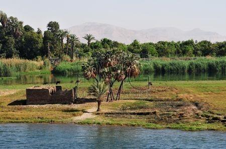 Le Nil (Egypte)