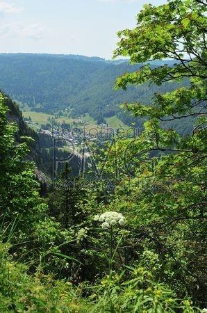 Col de la Faucille (Ain)