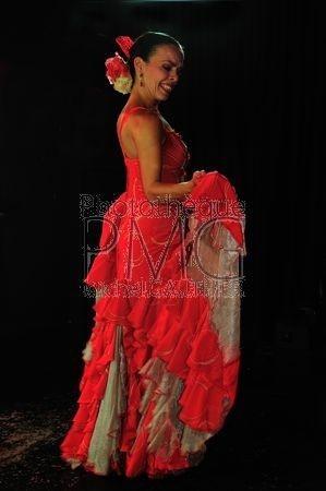 Flamenco (Ténérife)