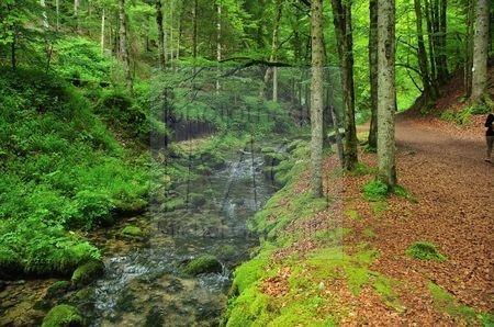 Source Bleue (Doubs)
