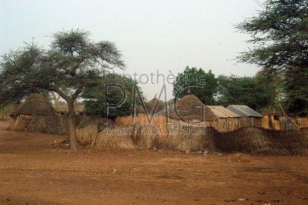 Campagne du Nord Sénégal (Sénégal)