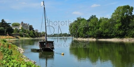 Chalonnes sur Loire  (Maine et Loire)