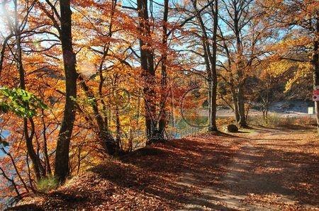 Le Lac de Chaumeçon (Nièvre)