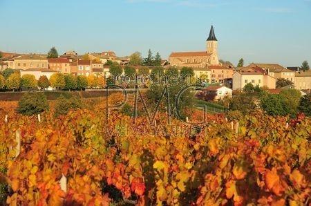Juliénas (Rhône)