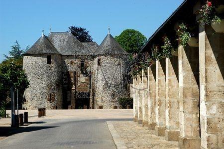 Fresnay sur Sarthe (Sarthe)