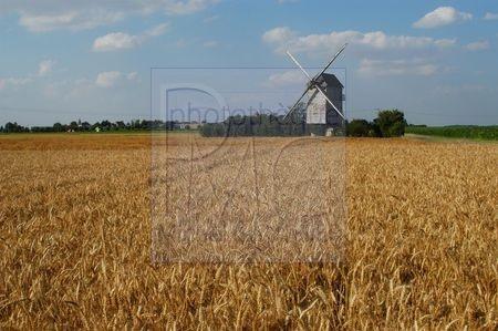 Moutiers en Beauce (Eure et Loir)