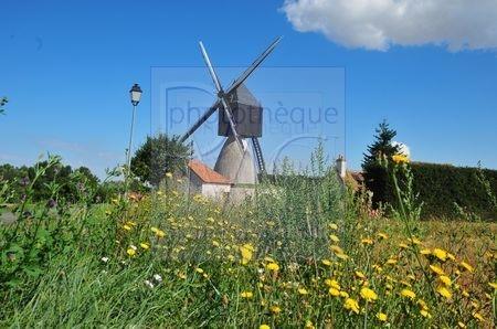 Nouans sur Loire (Loir et Cher)