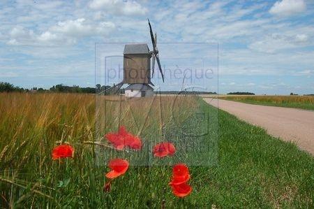 Moulon (Loiret)